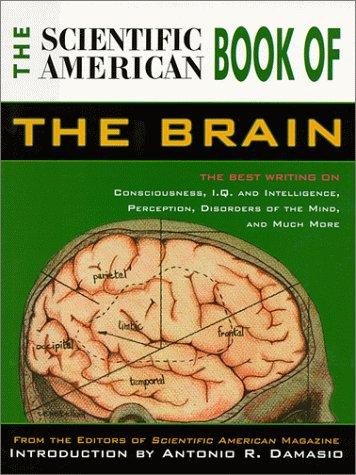 The Scientific American Book of the Brain