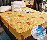 XLMHZP sabanas bajeras Ajustables,Ropa de Cama de Dibujos Animados Acolchada Cubierta de colchón Impermeable sábana Gruesa cálida sábana Grande Lavable Cama Doble Individual-M_220x220+30cm