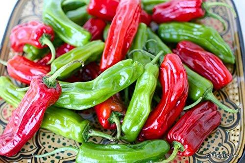 Portal Cool Shashito Pepper - 20 Samen - Erbstück - Grillen oder Braten - Plus Bonus