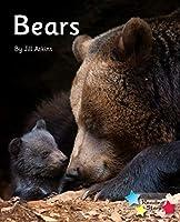 Bears: Phonics Phase 5 (Reading Stars Phonics)