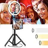 Dysel Anello Luminoso Selfie a LED con Supporto per Treppiede, 10 Pollici Luce Dimmerabile Flessibile, 2 Clip per iPhone iPad Telefono Cellulare per Streaming Live Trucco Youtube Video Height 80 cm