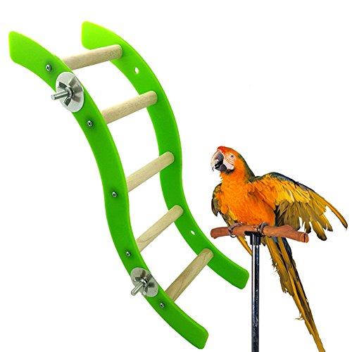 TankMR Display Mold Papegaai Hamster Acryl Wave Ladder Stand Crawling Ladders kooi spelen leuk speelgoed, Beste cadeau voor kat, OneSize, Groen