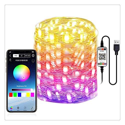DZHT Tira De Luz LED Inteligente Control De Aplicación Bluetooth Luces De Cadena De Luces Impermeables Al Aire Libre Dormitorio Decoraciones Navideñas (Size : 2m)