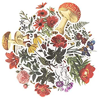 Knaid Vintage Flower Large Sticker Set  60 Pieces  Decorative Botanical Washi Stickers for Scrapbooking DIY Art Crafts Album Bullet Journaling Junk Journal Ephemera Planners Laptop and Calendars