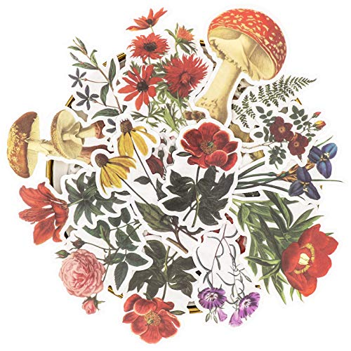 Knaid Vintage Flower Large Sticker Set (60 Pieces) Decorative Botanical Washi Stickers for Scrapbooking, DIY Art Crafts, Album, Bullet Journaling, Junk Journal Ephemera, Planners, Laptop and Calendars