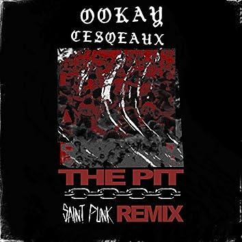 The Pit (Saint Punk Remix)