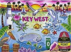 Best key west walking map Reviews