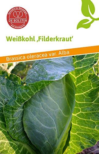 De Bolster 11550 Weißkohl Filderkraut (Bio-Weißkohlsamen)