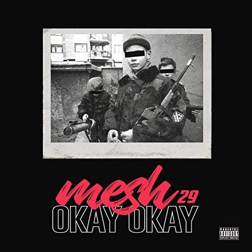 Mesh29
