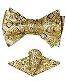 Ohlimuc Pajarita para Hombre (12 x 6.8 cm), Conjunto de Pajarita y Pañuelo de Bolsillo para Hombre...