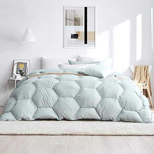 Hahaemall superking duvets,King Size-White Goose Feather & Down Duvet-100% Cotton Anti Dust Mite & Down Proof Fabric-Anti Allergen Winter Quilt All Seasons Down Duvet-220x240cm-1990g_B