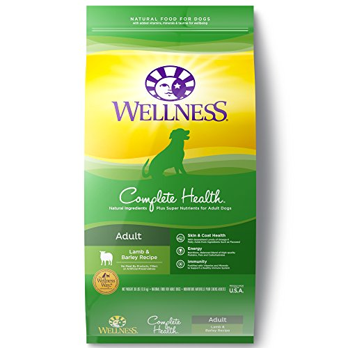 Wellness Complete Health Natural Dry Dog Food,...