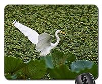 25X30cm Mouse Pad Mouse Mat Animal Lake Heron Egret Team Rabbit Wild Birds