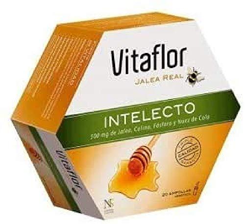 Actibios Vitaflor Intelecto 20Viales 1 Unidad 250 g