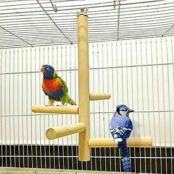 Lanfly - Perchoir à oiseaux en bois - Support pour perroquet - Bâton de meulage - Support en bois naturel - Jouet à mâcher pour pinsons, canaris, perruches et autres oiseaux de petite taille