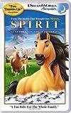 Spirit - Stallion of the Cimarron [Animated] [VHS]