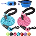 BAAPET 2 Packs 5 FT Strong Dog Leash with Comfortable Padded Handle and Highly Reflective Threads Dog Leashes for Medium and Large Dogs (Blue+Pink)