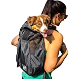 K9 Sport Sack Trainer | Dog Carrier Dog Backpack for Pets (X-Small, Irongate)