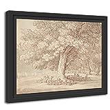 Printed Paintings Marco Americano (55x40cm): Thomas Rowlandson - Manada de...