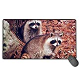 Pair of Racoon Wildlife Baby Animal Custom Mouse Pad,Large Gaming Mouse Pad,Extended Mousepad with Durable Stitched Edges,Computer Keyboard, PC and Laptop