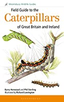 Field Guide to the Caterpillars of Great Britain and Ireland (Bloomsbury Wildlife Guides)