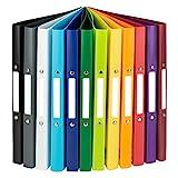 Idena 10426 - Ringbuch DIN A4, im 12er Set, 2-Ring-Mechanik, 20 mm breit, in 12 unterschiedlichen Farben