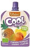 ヴィタビオ クールフルーツ アップル&マンゴー&パイン 90g