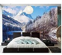 壁紙湖と雪の風景と冬の風景3d壁紙、リビングルームの寝室の壁紙家の装飾の壁画120x100cm