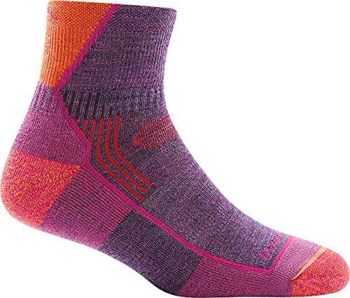 Darn Tough Hiker 1/4 Cushion Sock - Women's Plum Heather Small