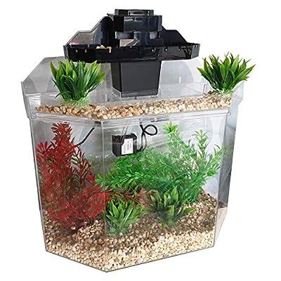 Aqua Falls The Seamless Acrylic Aquarium Fish Tank With Pump, Filter & Lighting - 22 Litre Perfect Starter Kit from Aqua Falls