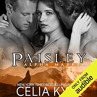 Paisley audiobook cover art