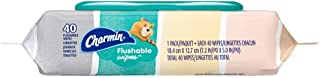 Charmin Freshmates Flushable Wipes with Refillable Tub (Pack of 6)