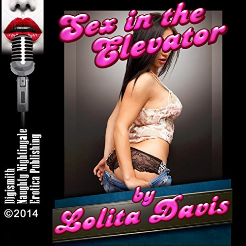 Sex in the Elevator audiobook cover art