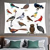 Tapiz de pared,cute birds vector colorful bird set isolated on white background,tapiz para colgar en la pared para dormitorio estético como arte de pared y decoración del hogar para el hogar y al aire