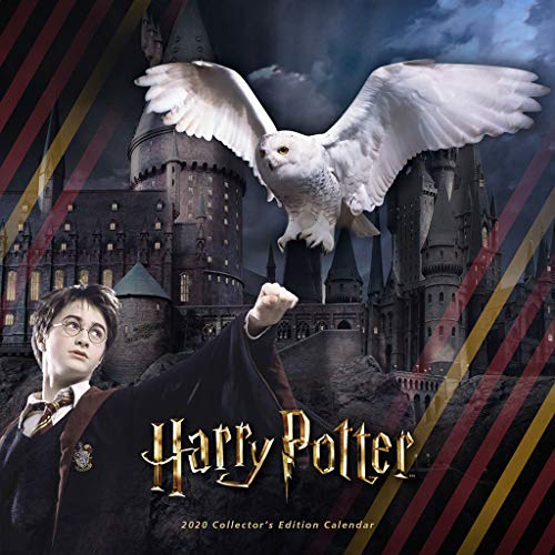 Harry Potter 2020 Calendar: Includes 2 Posters