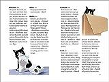 Wie wir Katzen die Welt sehen: Ein Ratgeber für meine liebsten Zweibeiner (insel taschenbuch) - 5