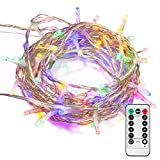 echosari 100 LEDs Outdoor LED Fairy String Lights Battery Operated with Remote (Dimmable, Timer, 8 Modes) - Multicolor