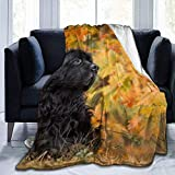 Not Applicable Unisex Flannel Blankets,Manta Decorativa De La Cama del Perro De Terranova para Padres Adultos Interior Al Aire Libre 102x127cm