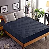 Edow 10 Inch Firm Foam Mattress, Waterproof Cover Fabric,Polyester-Filled Comfort Layers. (Queen, 10-inch)