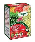 COPYR | Insetticida Liquido Piretro Verde, Antiparassitario Naturale, Afidi, Acari, Cocciniglia, per Piante Orticole, Ornamentali, Frutticole - flacone 50 ml