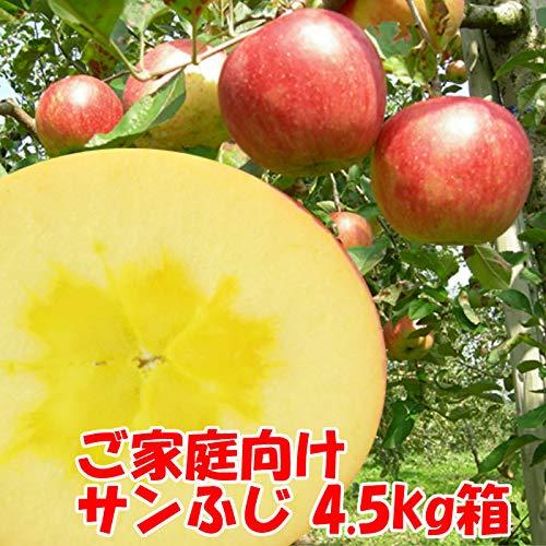 訳あり 福島県産 サンふじ リンゴ 4.5kg箱 12〜25玉入