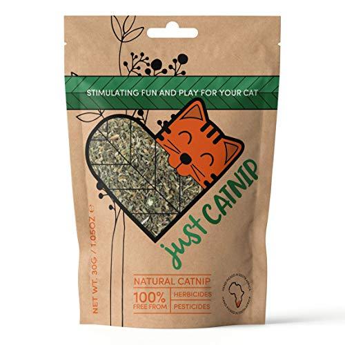Just Catnip - 100% natürliche Bio-Katzenminze für Katzen, angebaut in Südafrika |...