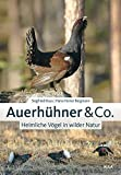 Auerhühner & Co.: Heimliche Vögel in wilder Natur
