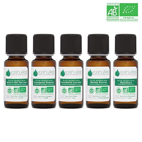 Pack de 5 Huiles Essentielles Bio - Les Indispensables pour l'Aromathérapie - Arbre à Thé, Eucalyptus Globulus, Gaulthérie Couchée, Menthe Poivrée, Ravintsara - Ecocert - HEBBD - 5x10 ml