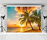 子供の漫画の誕生日の背景写真子供の誕生日パーティー漫画スタジオカスタムビーチの風景写真の背景撮影小道具