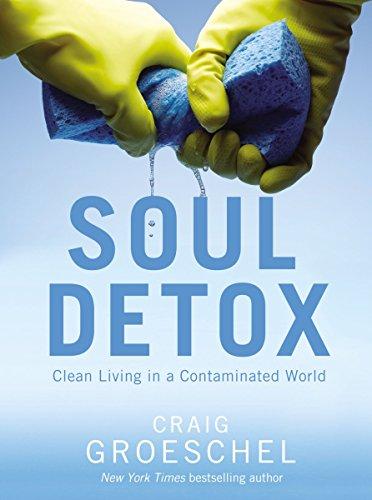 Soul Detox PB by Craig Groeschel (22-Oct-2013) Paperback