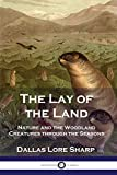 The Lay of the Land: Nature and the Woodland Creatures through the Seasons
