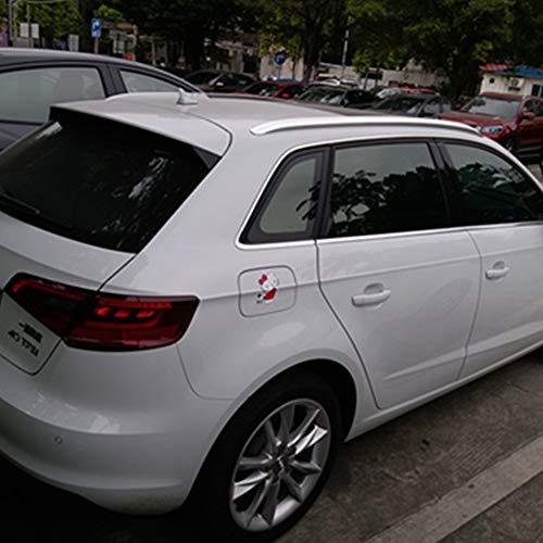 ZBHWYD Techos, Perchero, Adecuado para 16-19 Audi A3 Aleación de aleación de Aluminio Especial, Kit de modificación