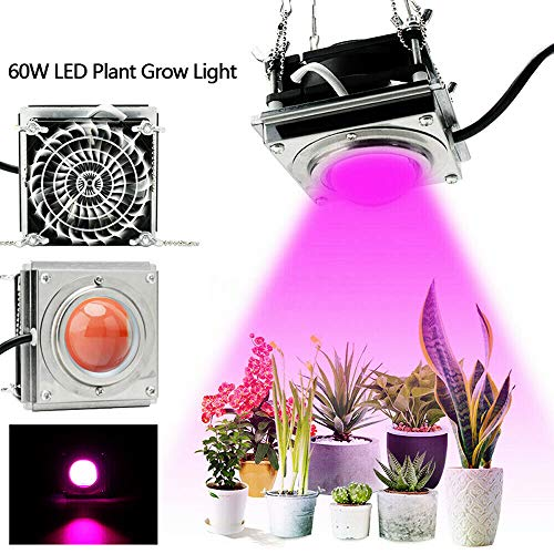 YDBET 60W LED Grow Light 4000K Full Spectrum LED Growing Lamp for Indoor Plant Growth LED Plant Lighting Waterproof for Greenhouse Grow Tent Veg Flower Chili
