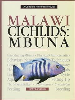 Malawi Cichlids: Mbuna